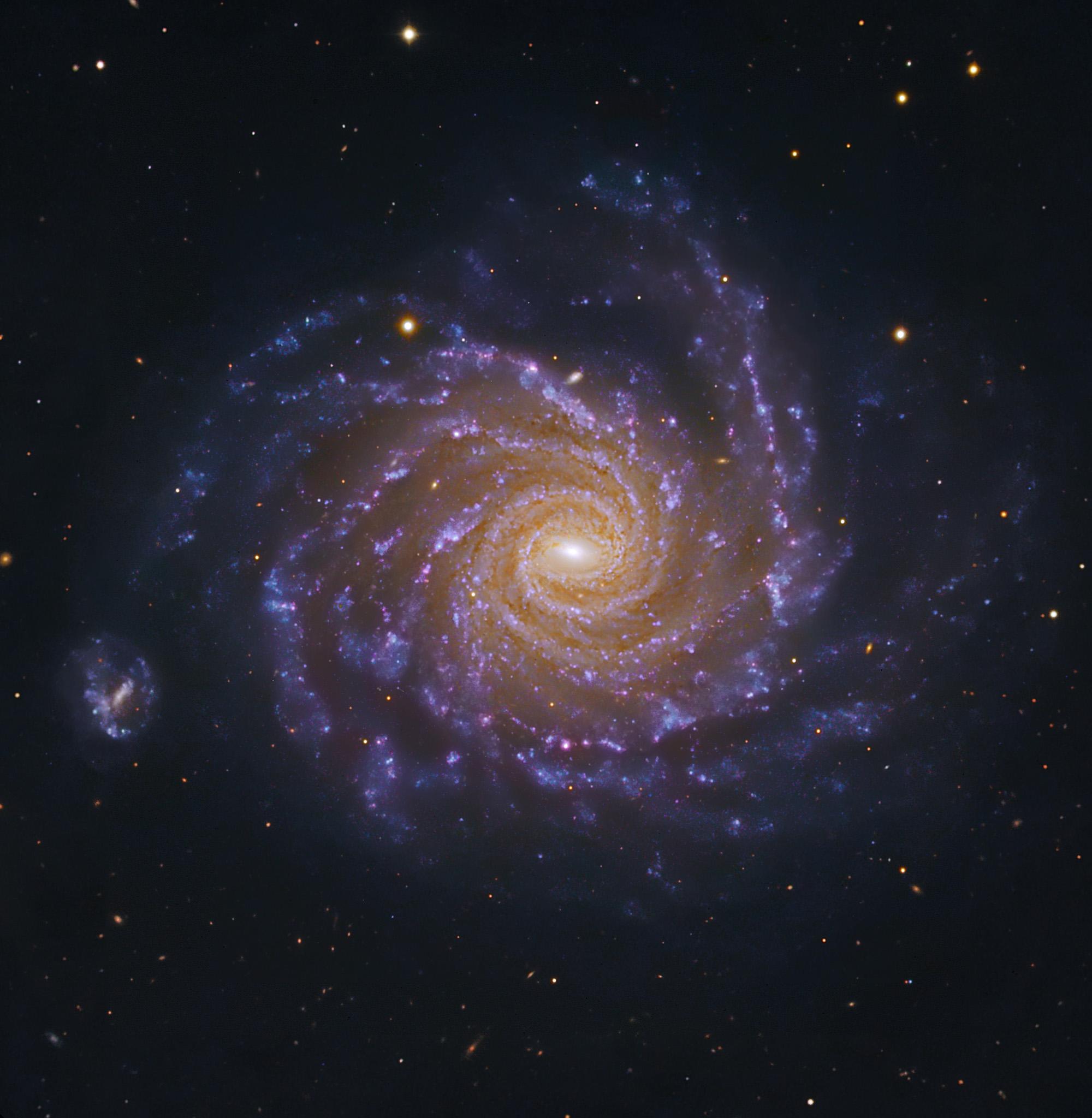 NGC1232-Subaru-ESO-L