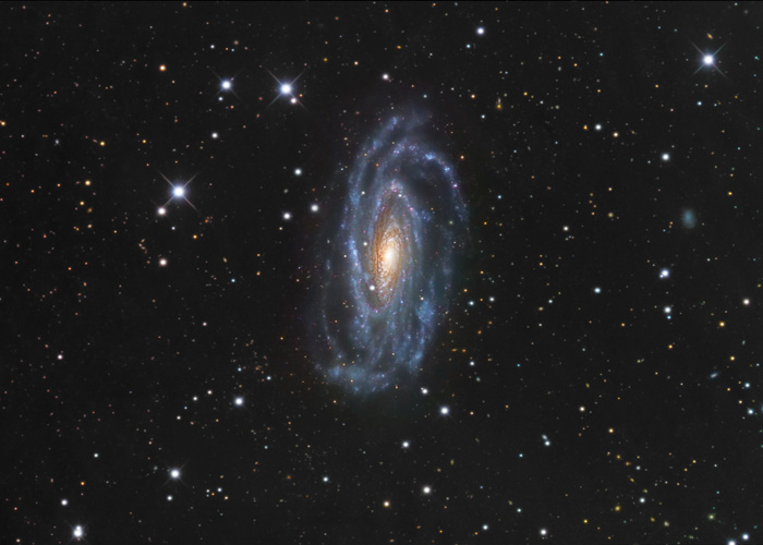 NGC 5033, Spiral Galaxy in CanesVenatici